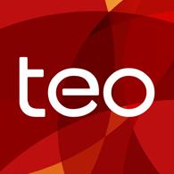Partner_teo.png